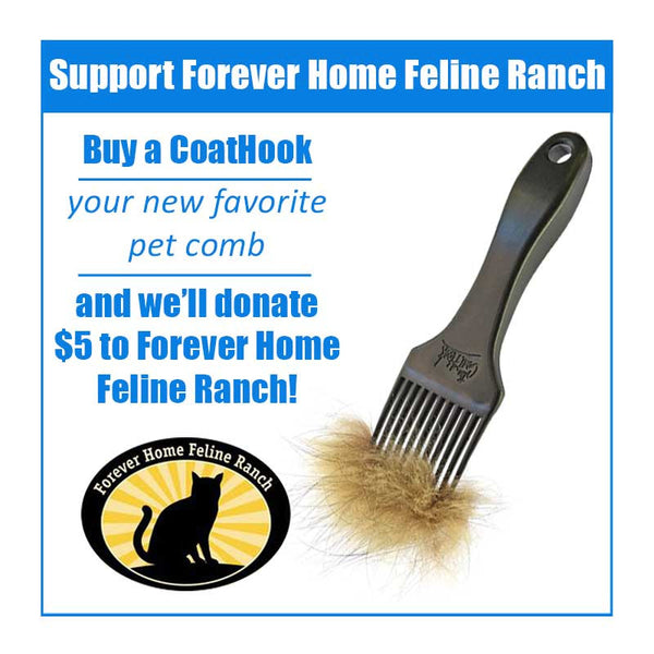 A CoatHook to Benefit Forever Home Feline Ranch<br /><br />
