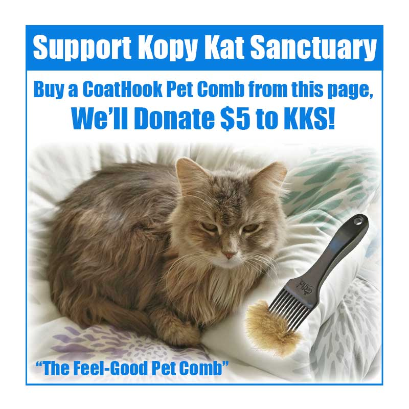 A CoatHook to Benefit <br />Kopy Kat Sanctuary