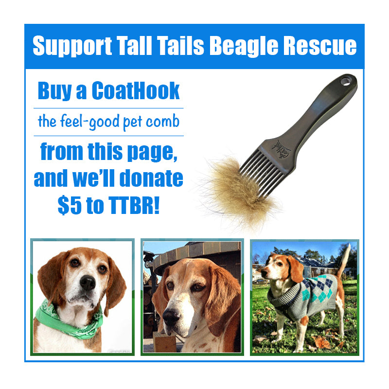 A CoatHook to Benefit <br />Tall Tails Beagle Rescue