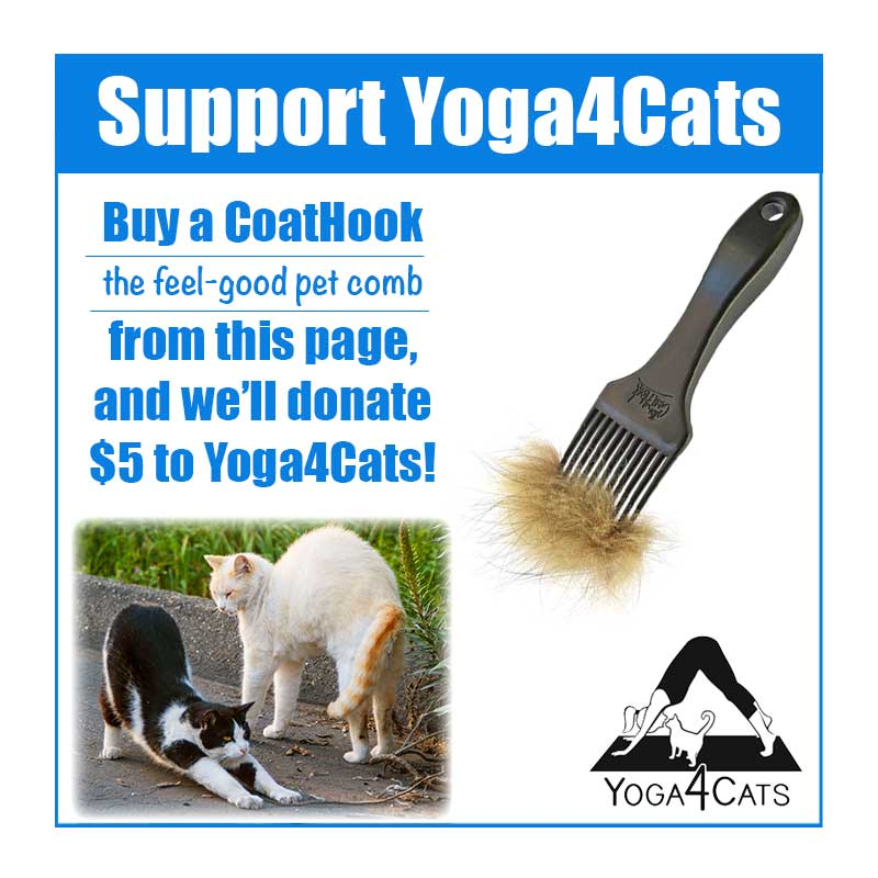 A CoatHook to Benefit <br /> Yoga4Cats