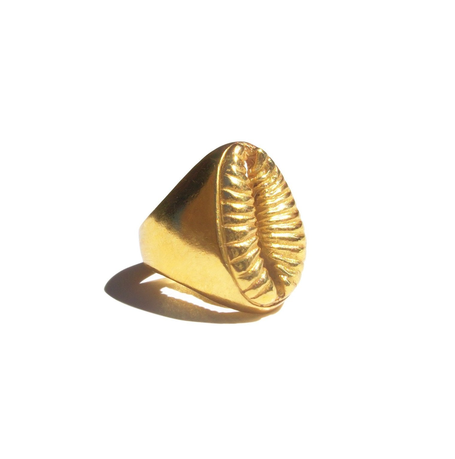 Cowrie Signet Ring by Rokus - Art Jewellery Store: Song of Jewellery
