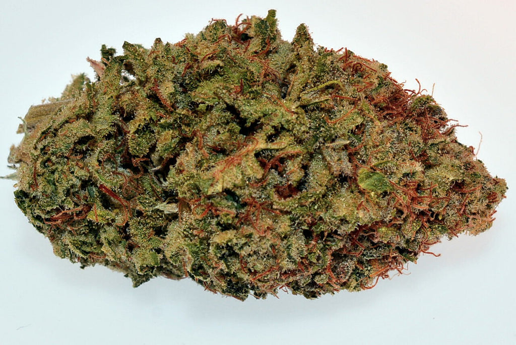 Hybrid - Grape God (Exotic)