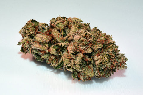Hybrid - Jerry Garcia - Exotic
