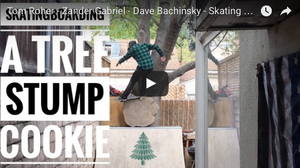 Dave Bachinsky - Skating A Tree Stump Full Edit