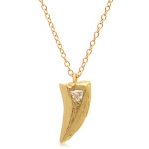 Velociraptor Tooth Necklace