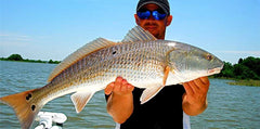 Redfish Caught Near Shore