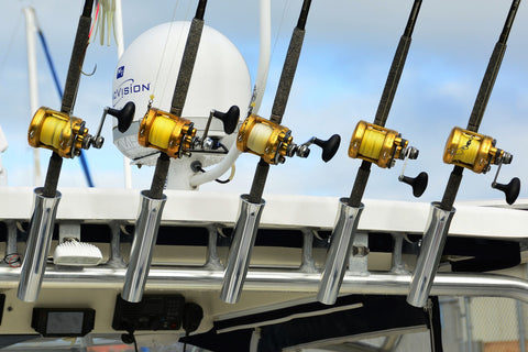 fishing rods in a row for fishing tournament