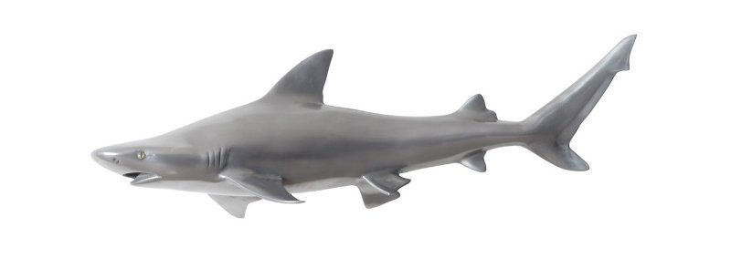 Rug and Home Shark Week Reef Shark Sculpture