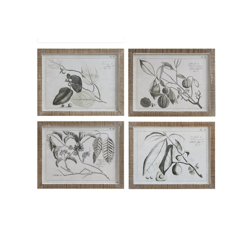 Secret Garden DA9309A Wall Decor, Set of 4