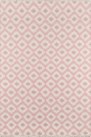 Thompson by Erin Gates THO10 Pink Rug