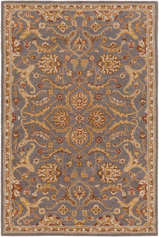 Middleton AWMD 2092 Gray Rug
