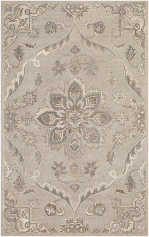 Caesar CAE-1201 Taupe Rug Rectangle 10 x 14