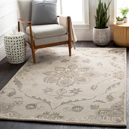 Caesar CAE-1201 Taupe Rug Rectangle 12 x 15