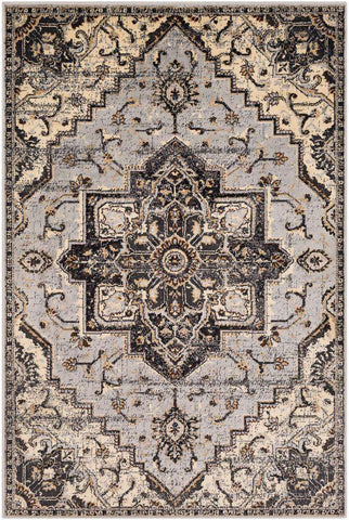 Paramount PAR-1091 Medium Gray Rug