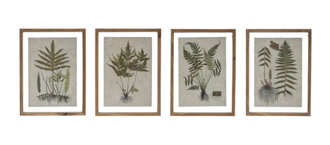 Botanist Df2854A Botanical Print On Textured Material Wall Décor With Wood Framed Art-Set Of 4
