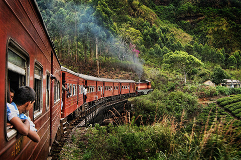 Sri Lankan Train Ride