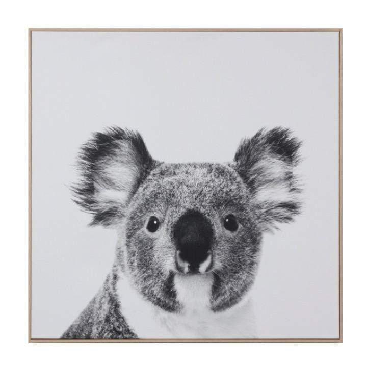 Middle of Nowhere LP Artwork Koala Canvas