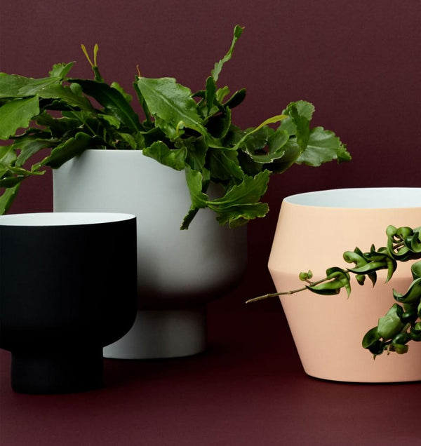 Middle of Nowhere Pots + Vases + Lanterns Fergus Planter - Black