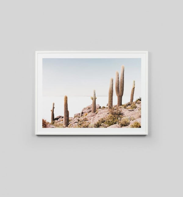 Warranbrooke Artwork Desert Cactus Print