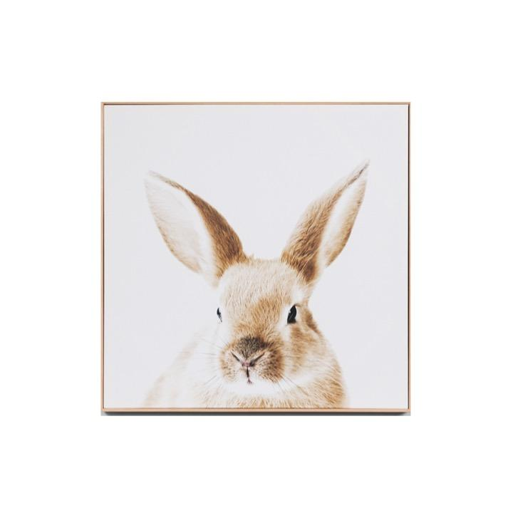 Lovable Bunny Framed Canvas