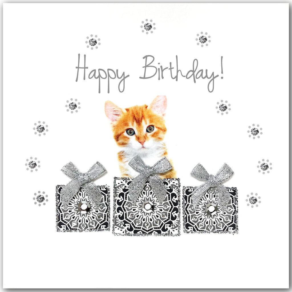 Birthday Ginger Kitten - L1850