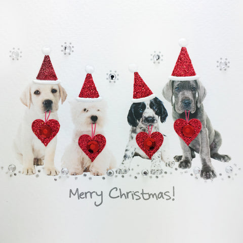 Christmas Puppies - N1745