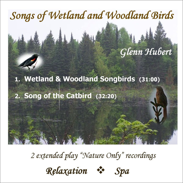 Songs of Wetland & Woodland Birds Glenn Hubert CD front