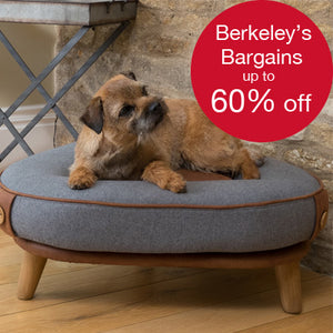 Berkeley's Bargains