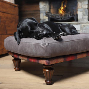 Have you ever wondered what the benefits are of a raised dog bed?