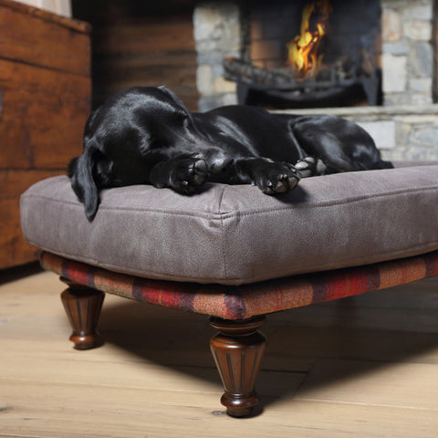 Branoch Orthopaedic Dog Beds for medium sized dogs - Orchard Fruits Wool – Berkeley Cole