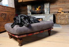 Black Lab snoozing on the Branoch luxury dog bed from Berkeley Cole