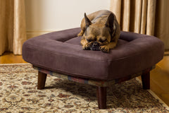 Branoch small orthopaedic dog bed from Berkeley Cole