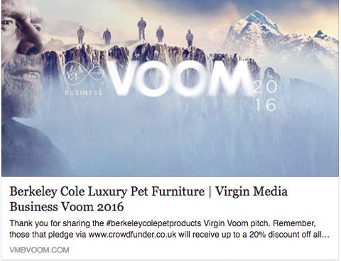Berkeley Cole Luxury Pet Furniture Virgin Voom 2016