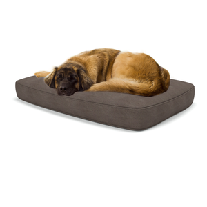 Altara large luxury dog beds in GraphiteMachine washable dog beds from Berkeley Cole.