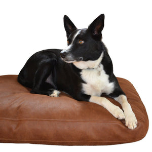 Altara Claw-Proof Luxury Dog Bed - Luxury Pet Furniture - Graphite - Collie Dog