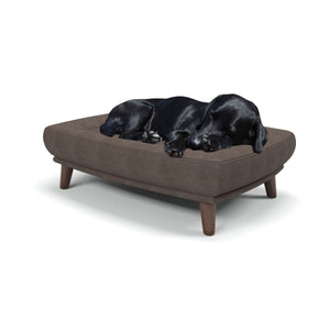 Black Labrador enjoying the comfort on the Berkeley Cole Durrant Large Dog Bed