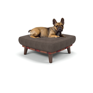 Branoch - small luxury dog beds in Orchard Fruits - Machine washable dog beds from Berkeley Cole.