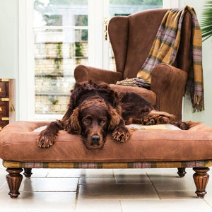 Luxury Dog Bed from Berkeley Cole; Luxury Pet Furniture, Rhubarb Crumble