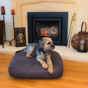 Leather-lux Luxury Dog Bed from Berkeley Cole - Luxury Pet Furniture - Graphite