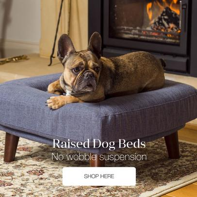 Berkeley Cole luxury dog beds - Raised dog beds that match your home interior