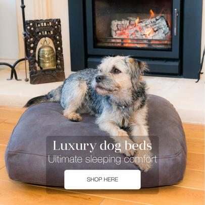 Luxury raised dog beds and Luxury pet beds that match your home interior - Berkeley Cole