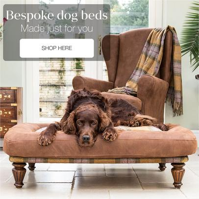 Luxury dog beds and Luxury pet beds that match your home interior - Berkeley Cole