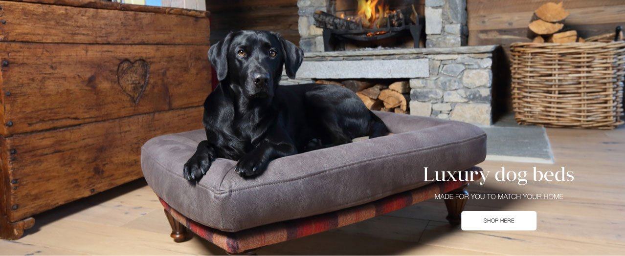 Berkeley Cole Luxury Dog Beds - Fabulous washable dog beds - Raised dog beds - Black Labrador