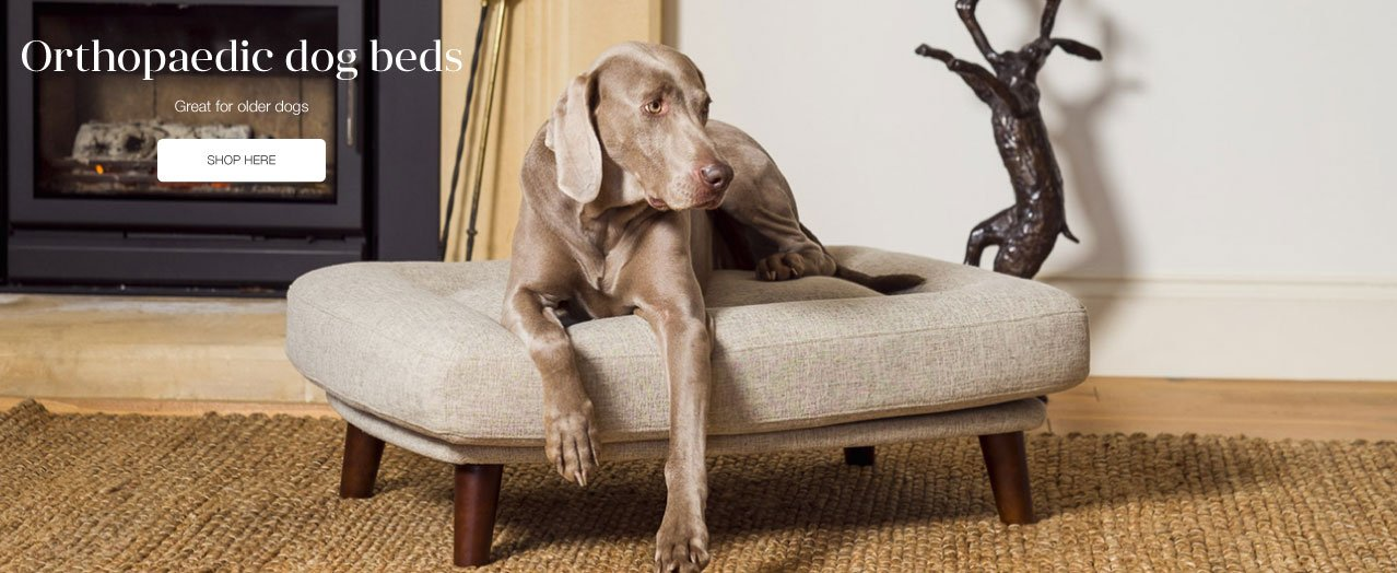 Berkeley Cole Luxury Dog Beds - Fabulous washable dog beds - Raised dog beds - Dalmatian