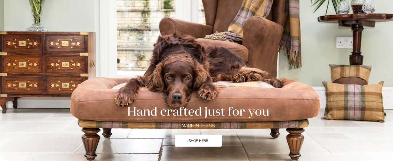 Berkeley Cole Luxury Dog Beds - Fabulous washable dog beds - Raised dog beds - English Setter