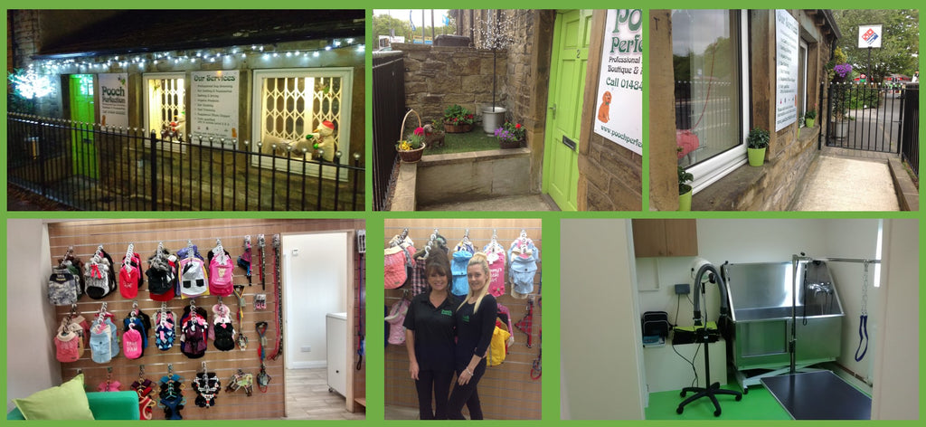Pooch Perfection Dog Grooming Salon Honley