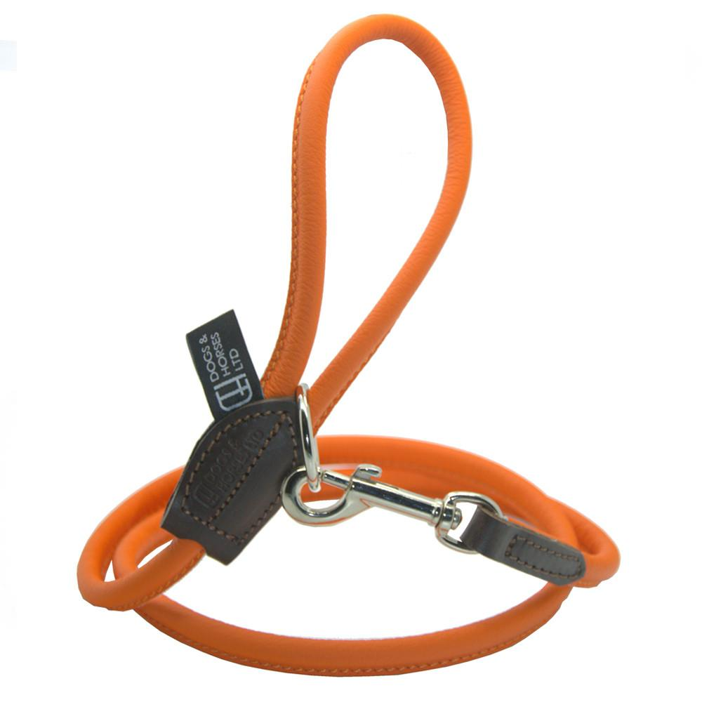 D&H Contemporary Rolled Leather Dog Lead