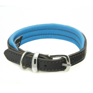 D&H Contemporary Padded Leather Dog Collar