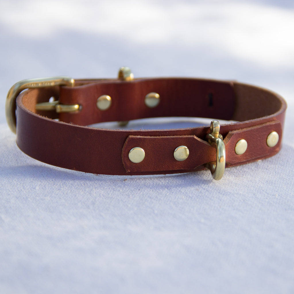 Dog Collar - Mainland Revival LLC.