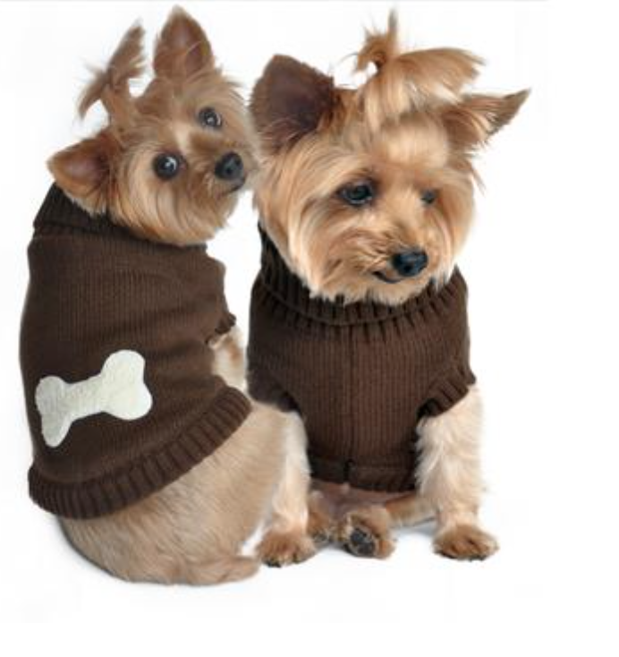 Doggie Brown Bone Sweater - Suede Boutique  - 1